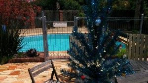 A Christmas tree or a jump in the pool? this is confusing...