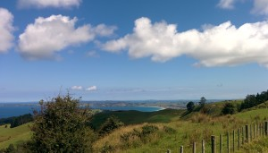 The view between Leigh and Pakiri
