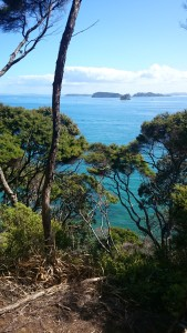 Amazing view from Kawau Island